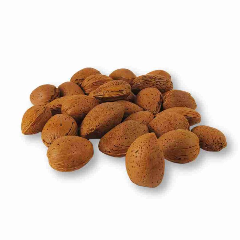 mandorle-pizzute-di-avola-biologiche-in-guscio-1-kg